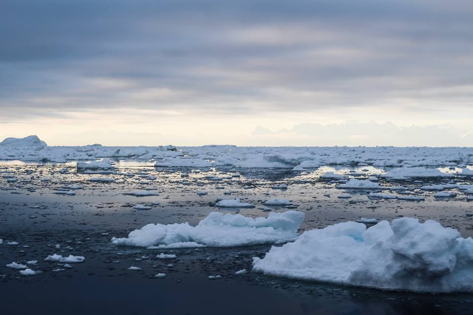 Why heavy fuel oil must be banned in the Arctic right now