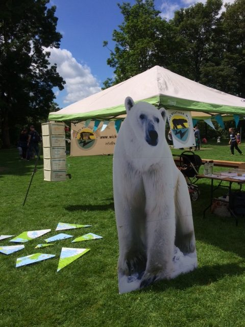 Polar bear experiences scorching temperatures at Festival of Nature!